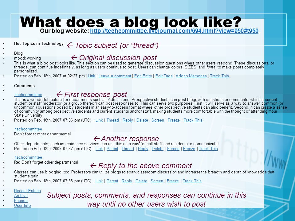 What does a blog look like
