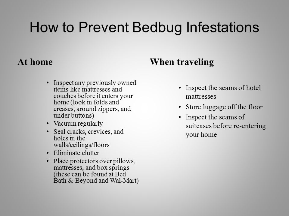 Can You Sue A Hotel For Getting Bed Bug Bites