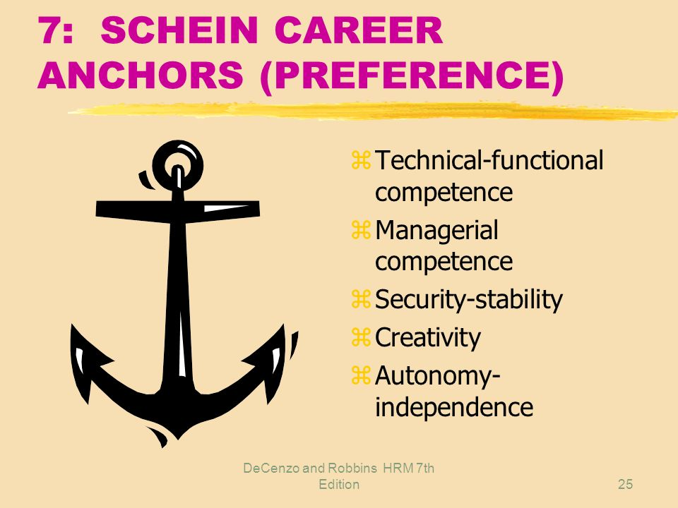 7: SCHEIN CAREER ANCHORS (PREFERENCE)
