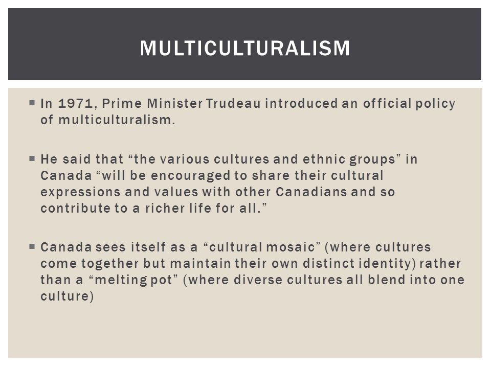 essay why am i the only one flylady Types of Multiculturalism