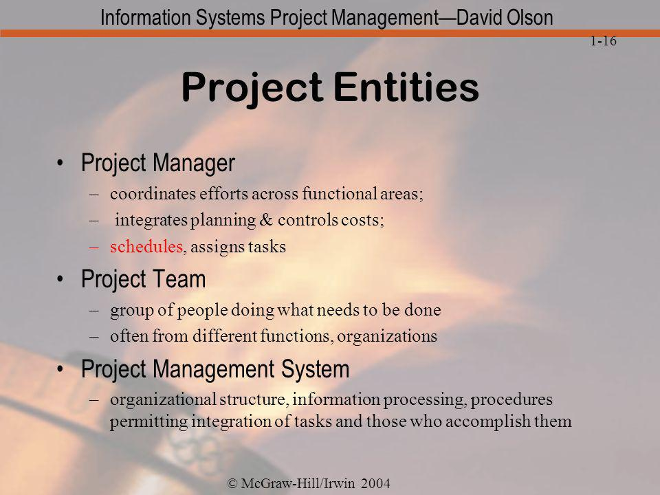 Project Entities Project Manager Project Team