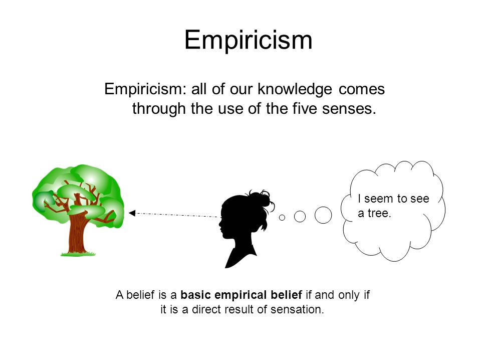 empiricism and connie essay