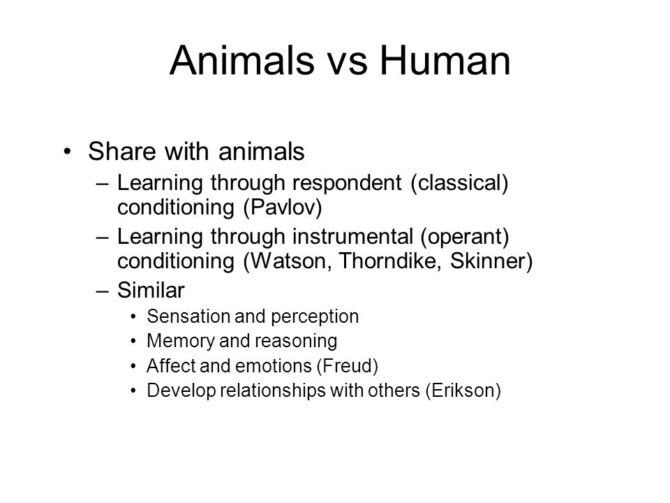 Animals vs Human Share with animals