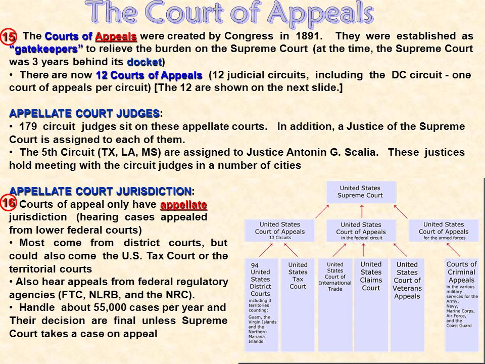 The Court of Appeals 15.