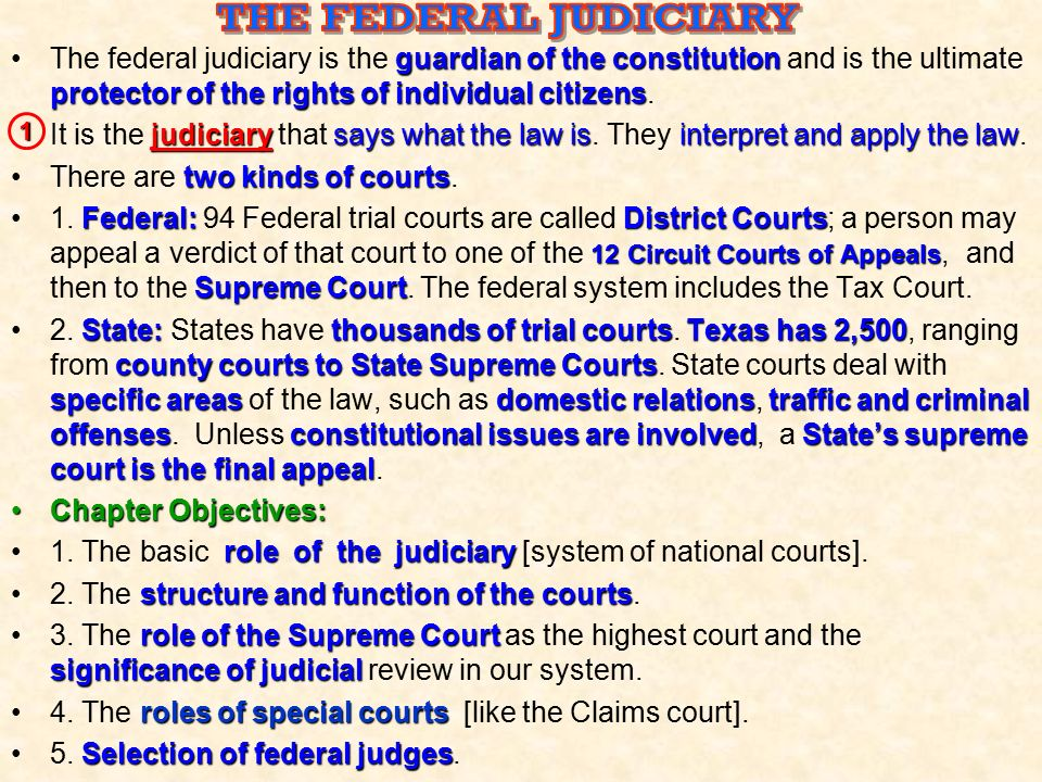 THE FEDERAL JUDICIARY The federal judiciary is the guardian of the constitution and is the ultimate protector of the rights of individual citizens.