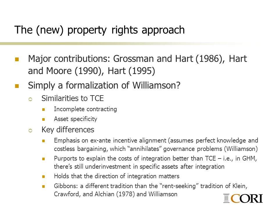 The (new) property rights approach