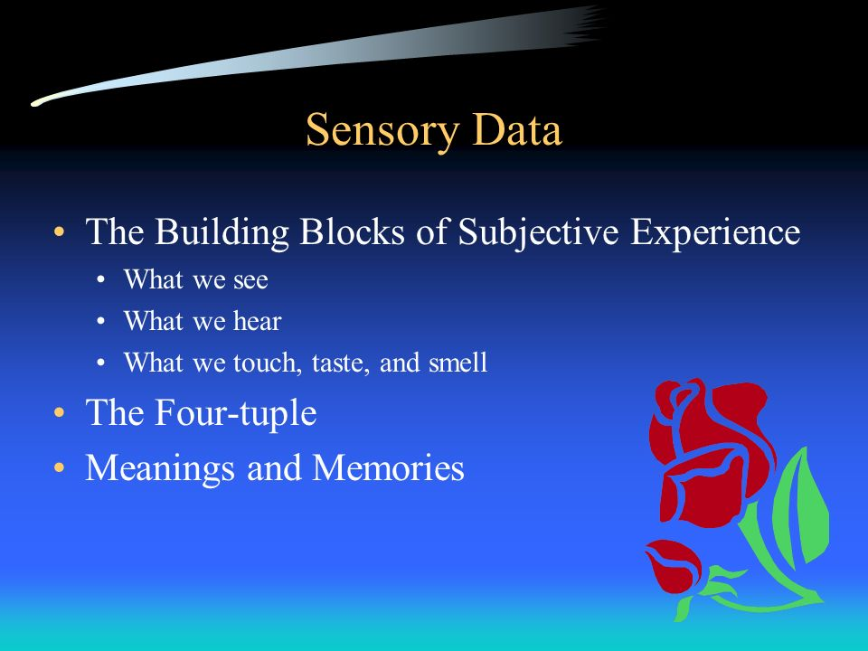Sensory Data The Building Blocks of Subjective Experience