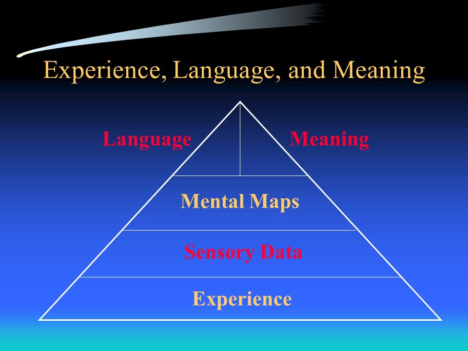 Experience, Language, and Meaning
