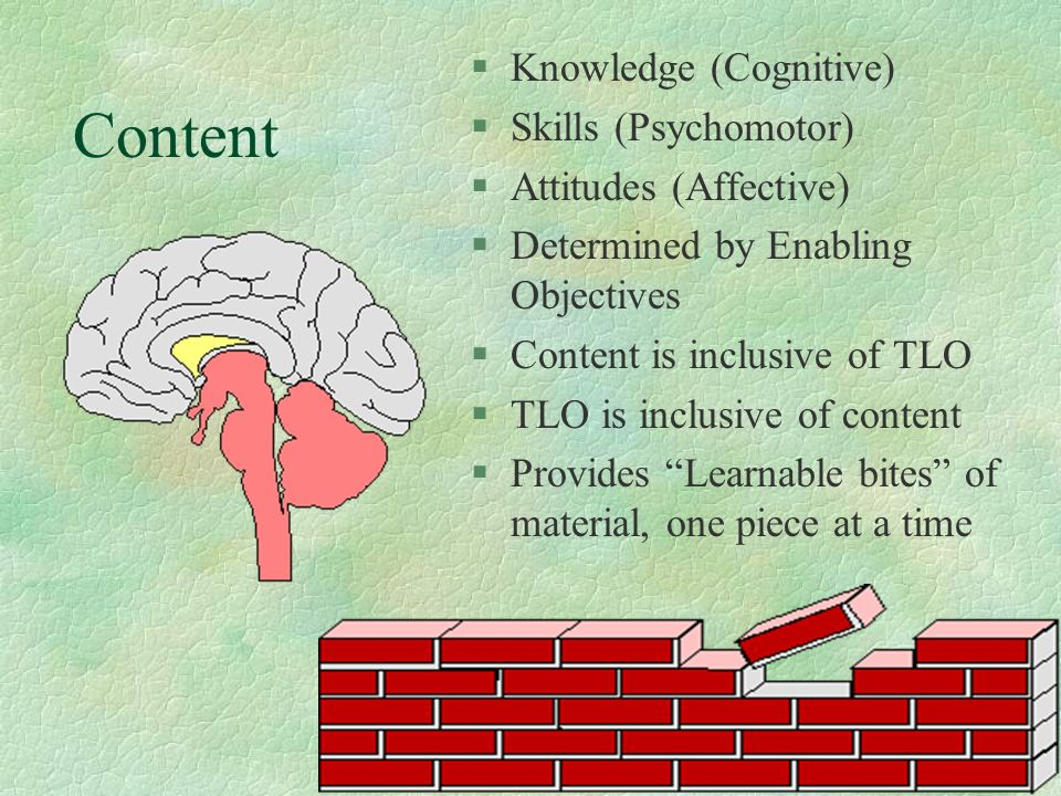 Content Knowledge (Cognitive) Skills (Psychomotor)