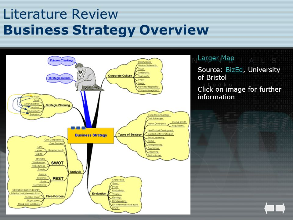Literature Review Business Strategy Overview