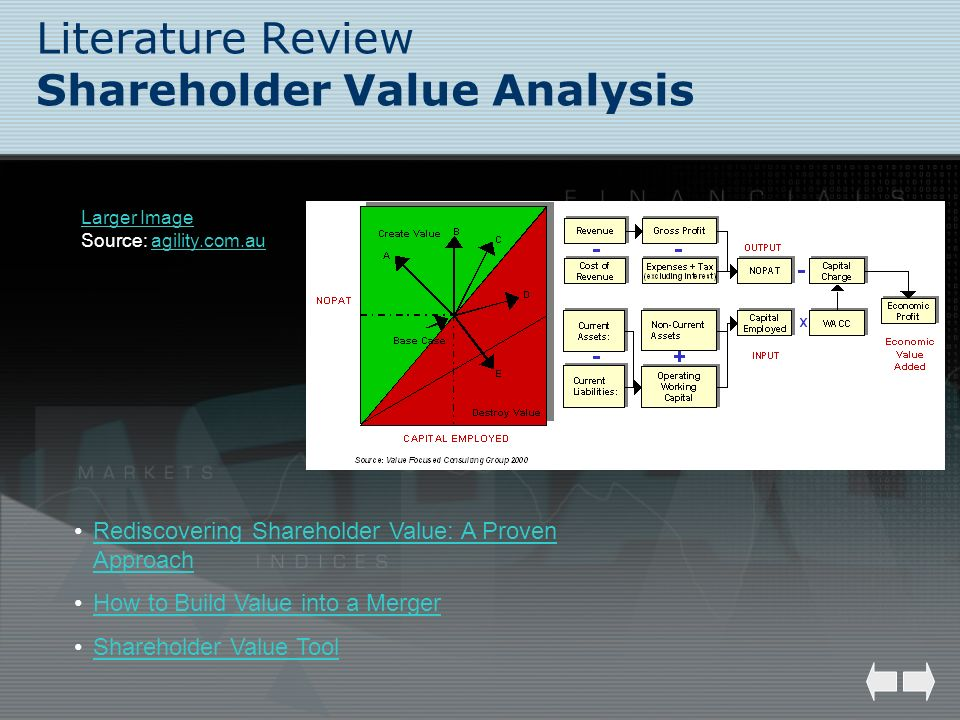 Literature Review Shareholder Value Analysis