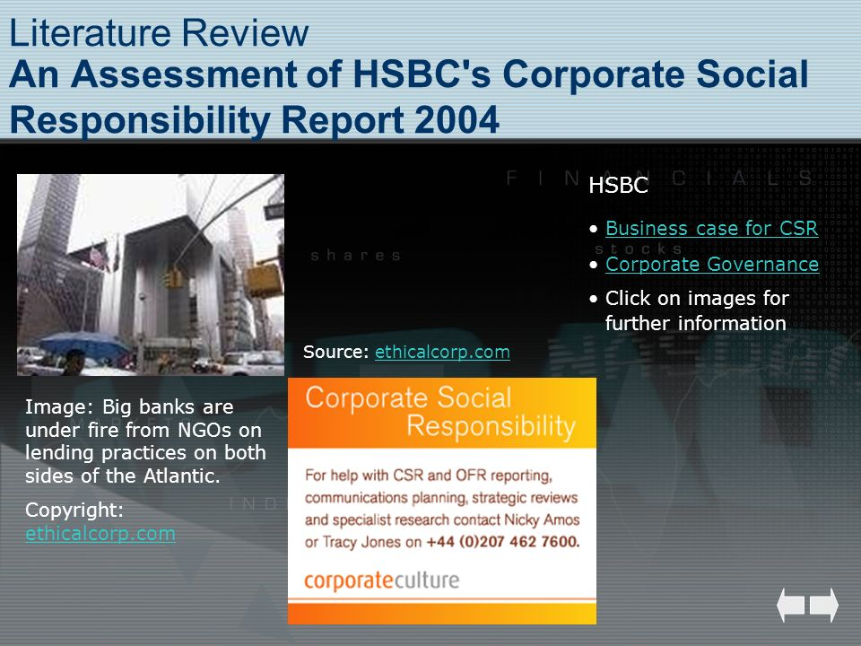 Literature Review An Assessment of HSBC s Corporate Social Responsibility Report 2004