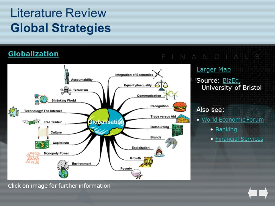 Literature Review Global Strategies