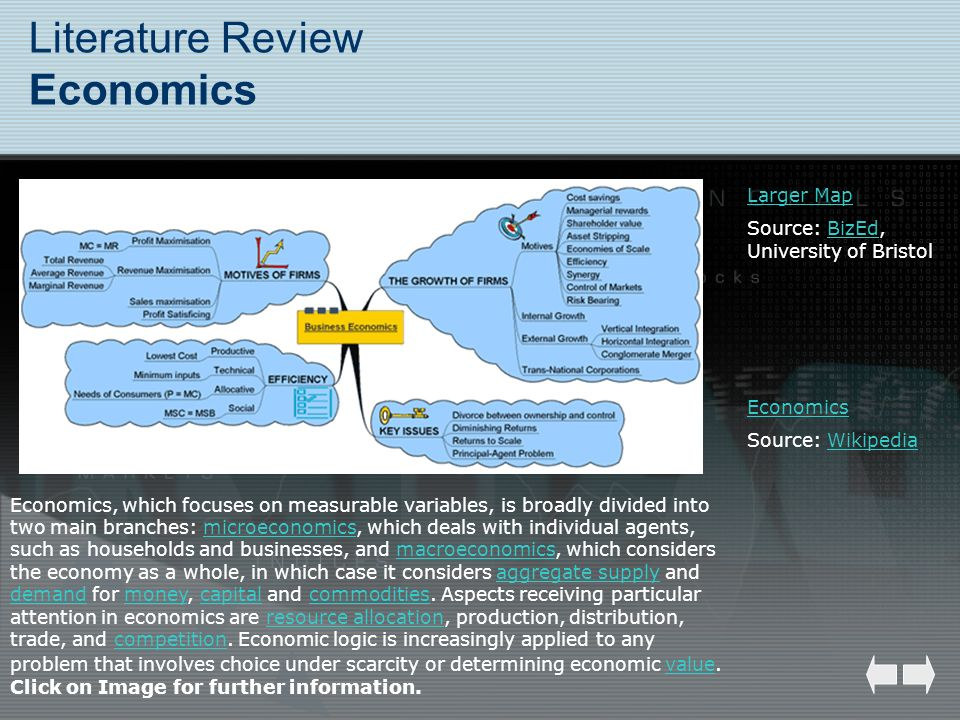 Literature Review Economics