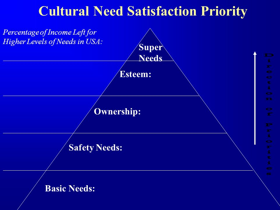 Cultural Need Satisfaction Priority