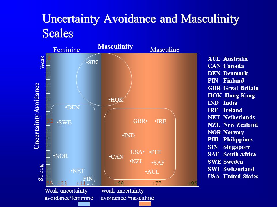 Uncertainty Avoidance and Masculinity Scales