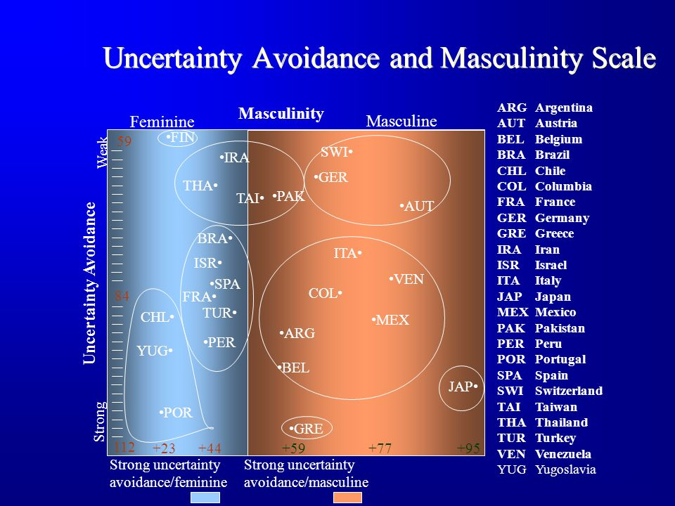 Uncertainty Avoidance and Masculinity Scale