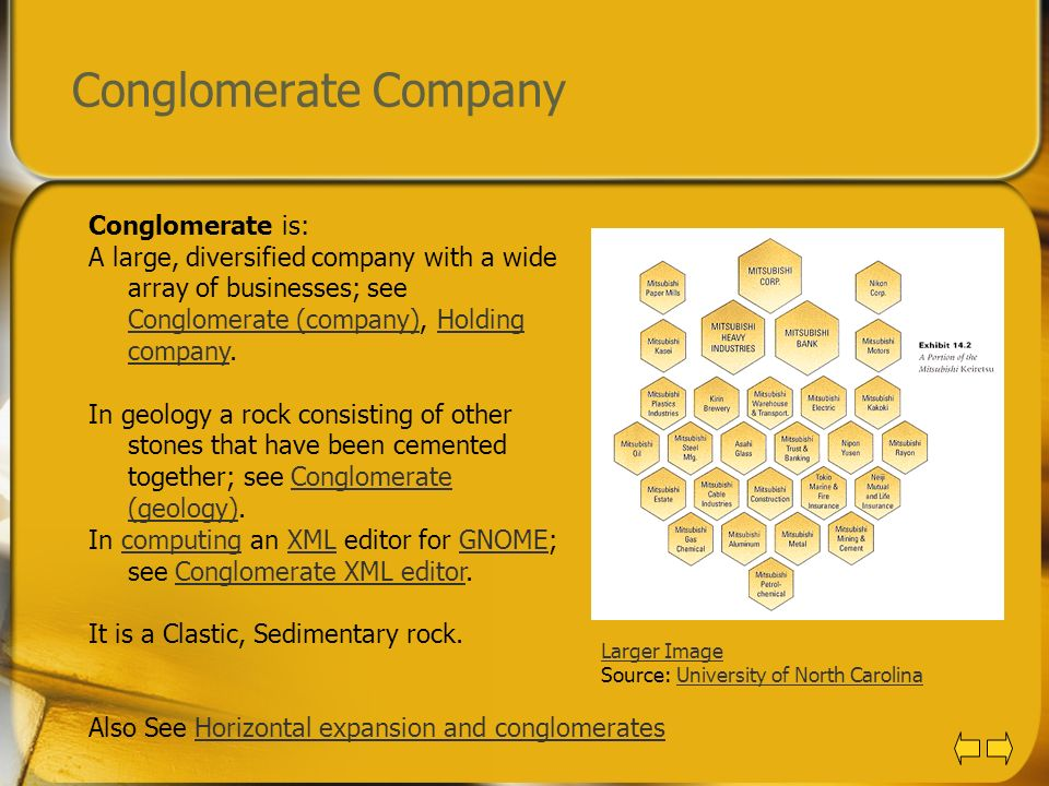 Conglomerate Company Conglomerate is: