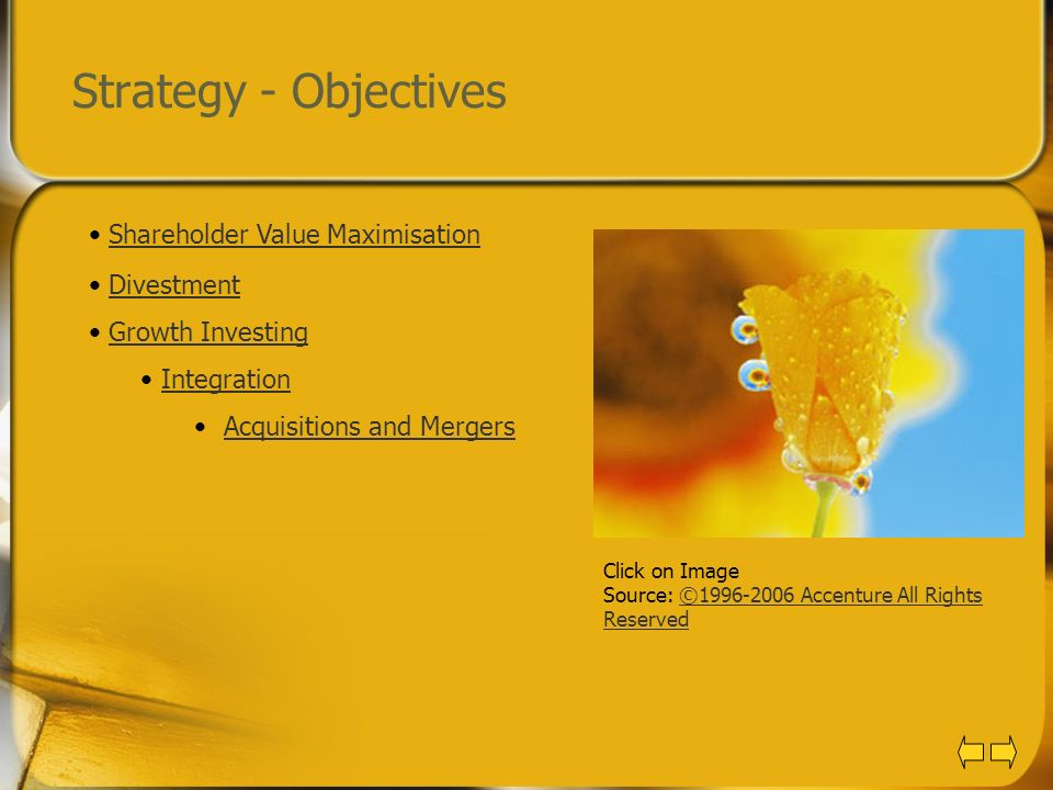 Strategy - Objectives Shareholder Value Maximisation Divestment
