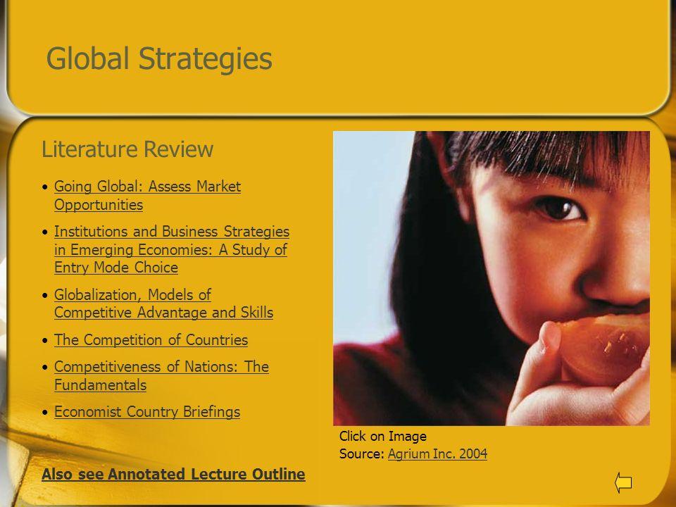 Global Strategies Literature Review