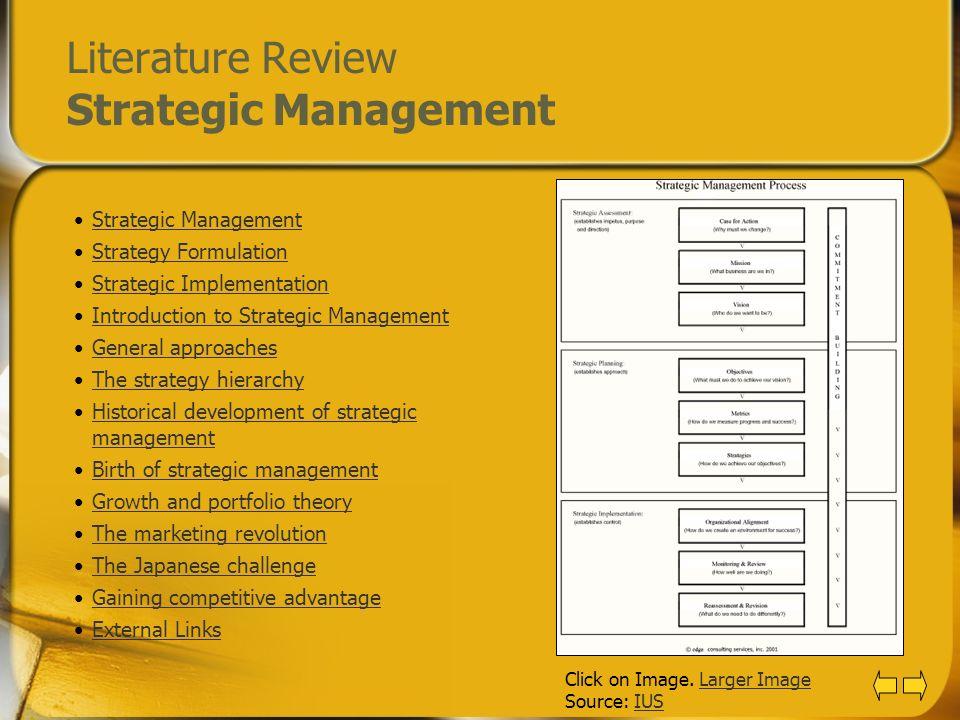Literature Review Strategic Management