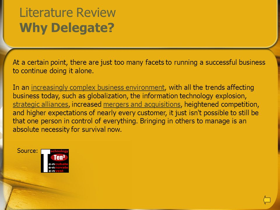 Literature Review Why Delegate