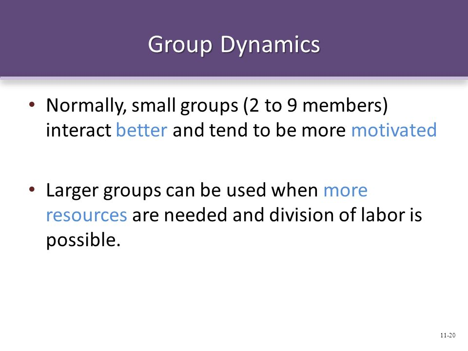 Group Dynamics Normally, small groups (2 to 9 members) interact better and tend to be more motivated.