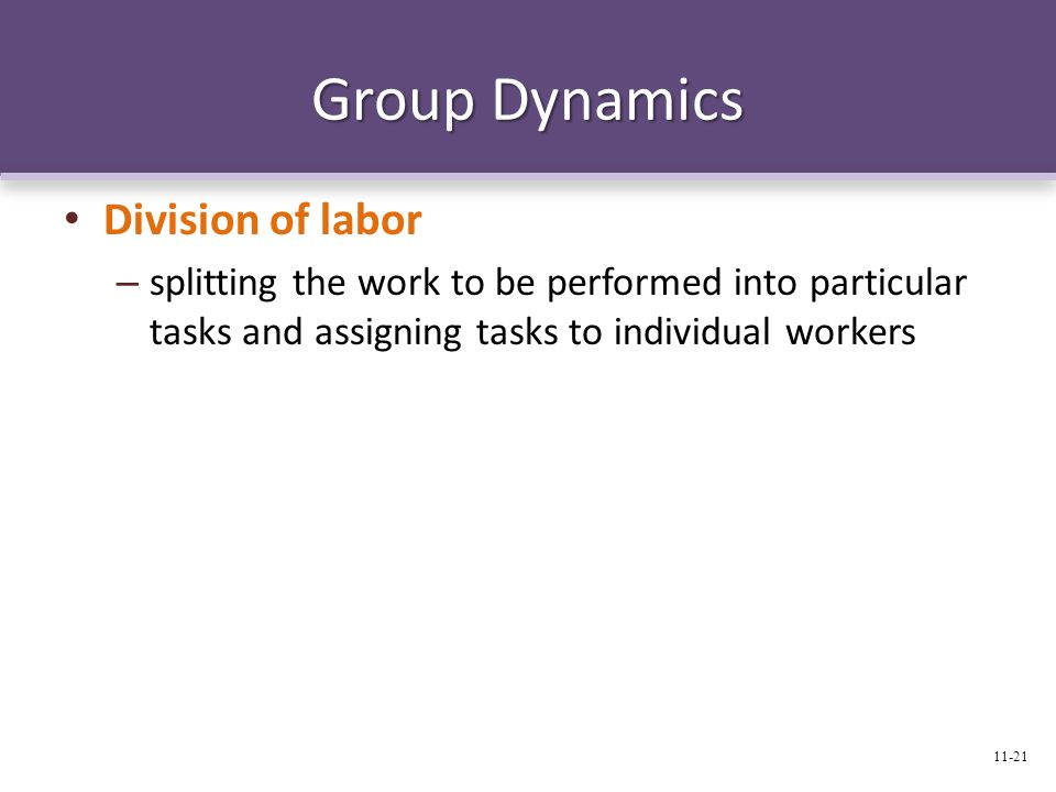 Group Dynamics Division of labor