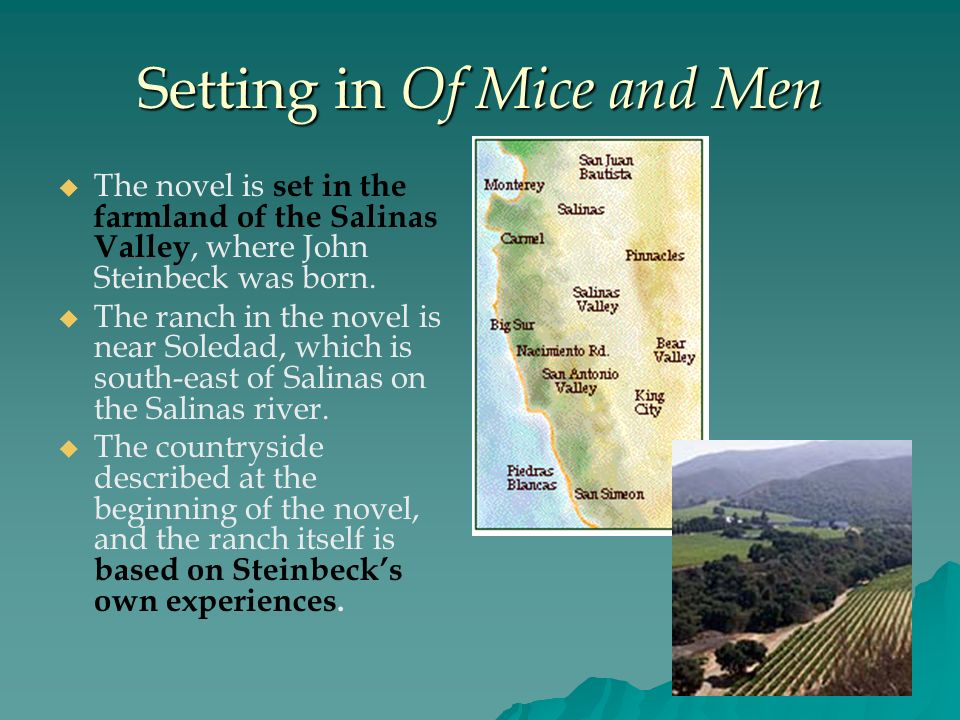 In John Steinbeck's Of Mice and Men, why does Crooks keep a California civil code from 1905?
