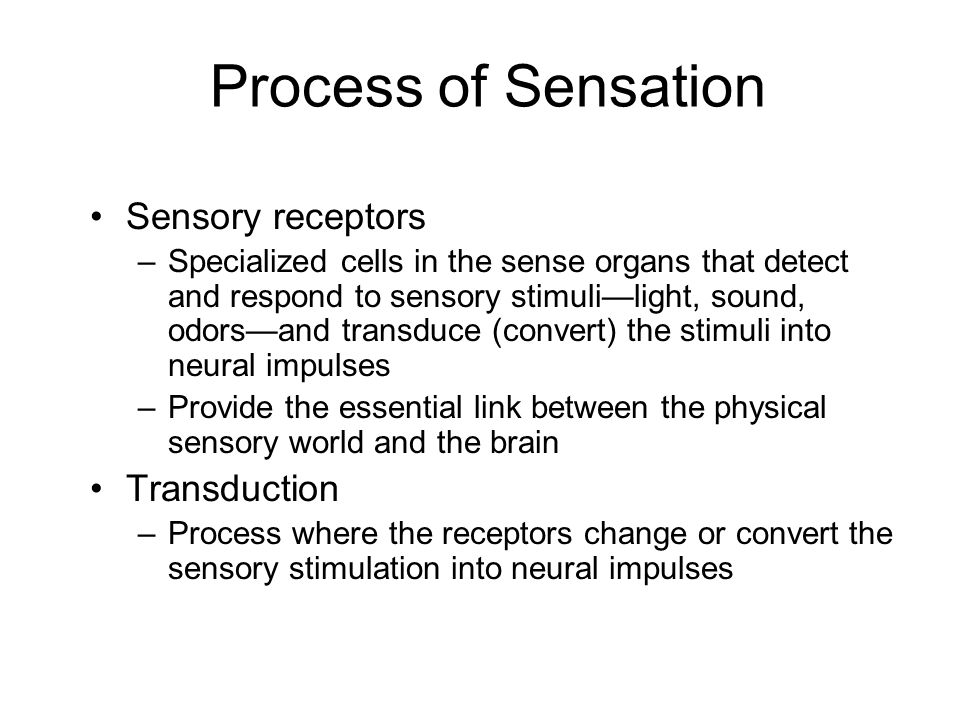 Process of Sensation Sensory receptors Transduction