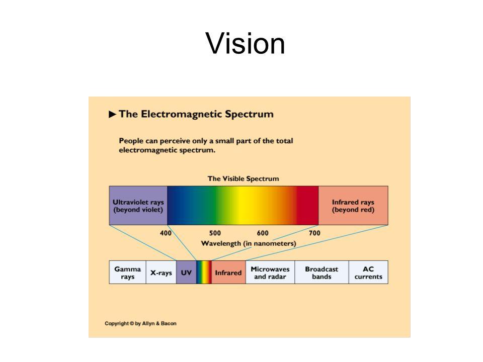 Vision 2 2