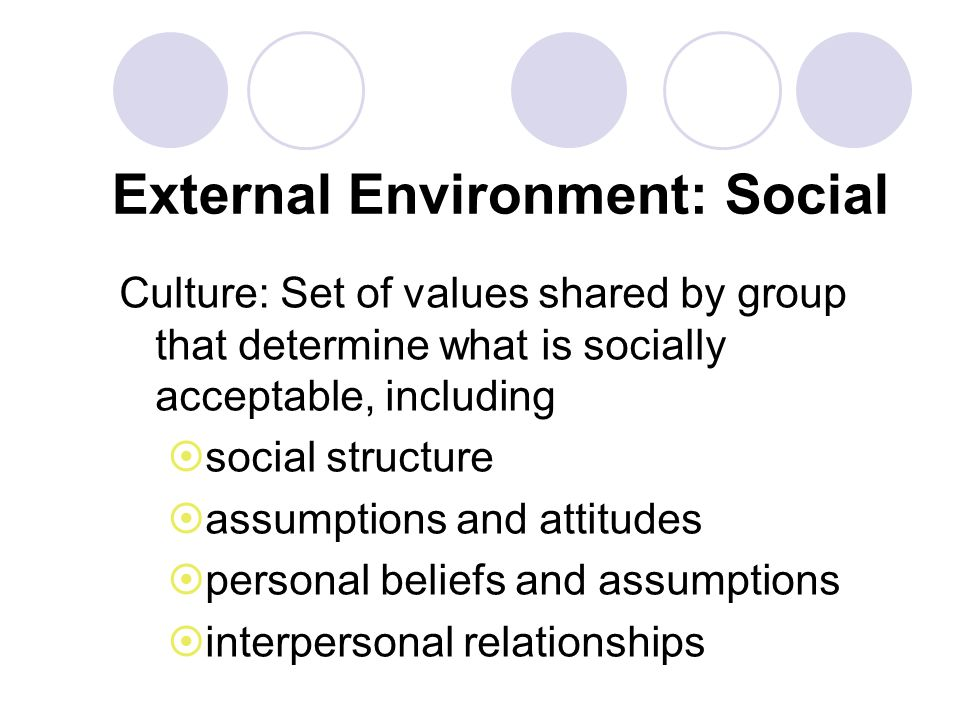 External Environment: Social