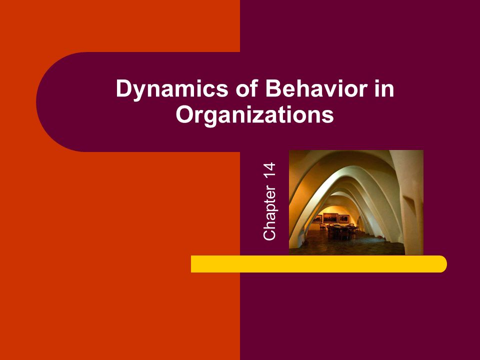 Dynamics of Behavior in Organizations