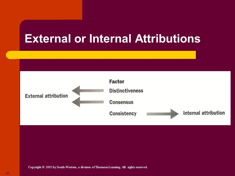 External or Internal Attributions