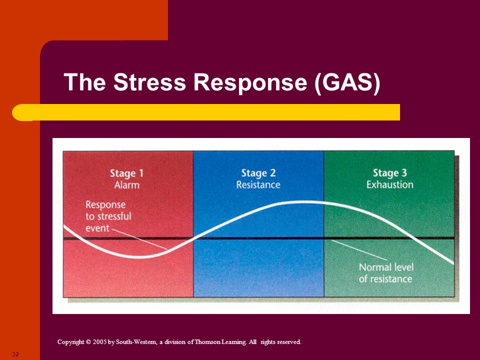 The Stress Response (GAS)