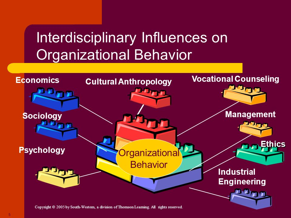 Interdisciplinary Influences on Organizational Behavior