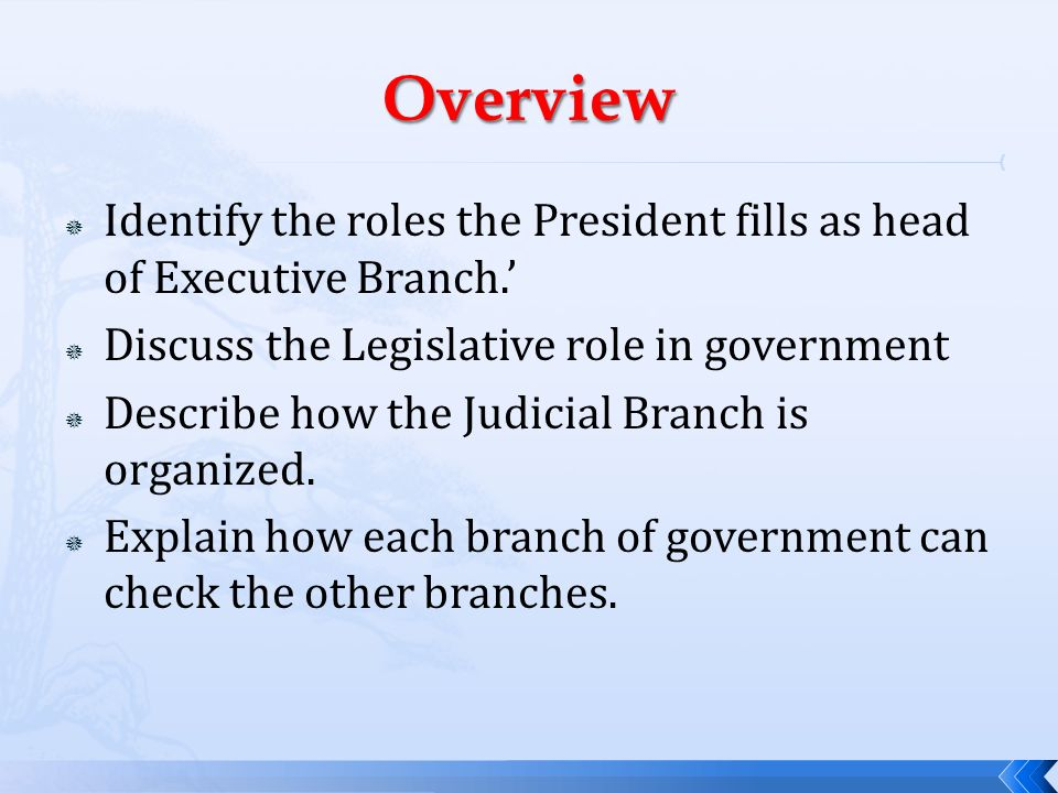 Overview Identify the roles the President fills as head of Executive Branch.' Discuss the Legislative role in government.