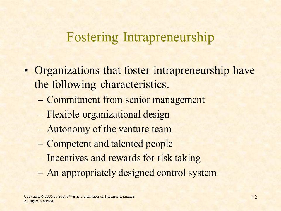 Fostering Intrapreneurship