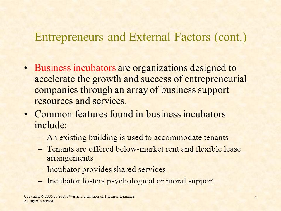 Entrepreneurs and External Factors (cont.)