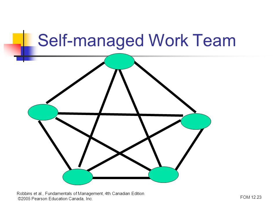 Self-managed Work Team