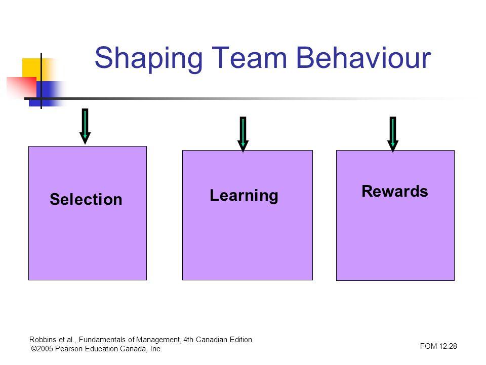Shaping Team Behaviour
