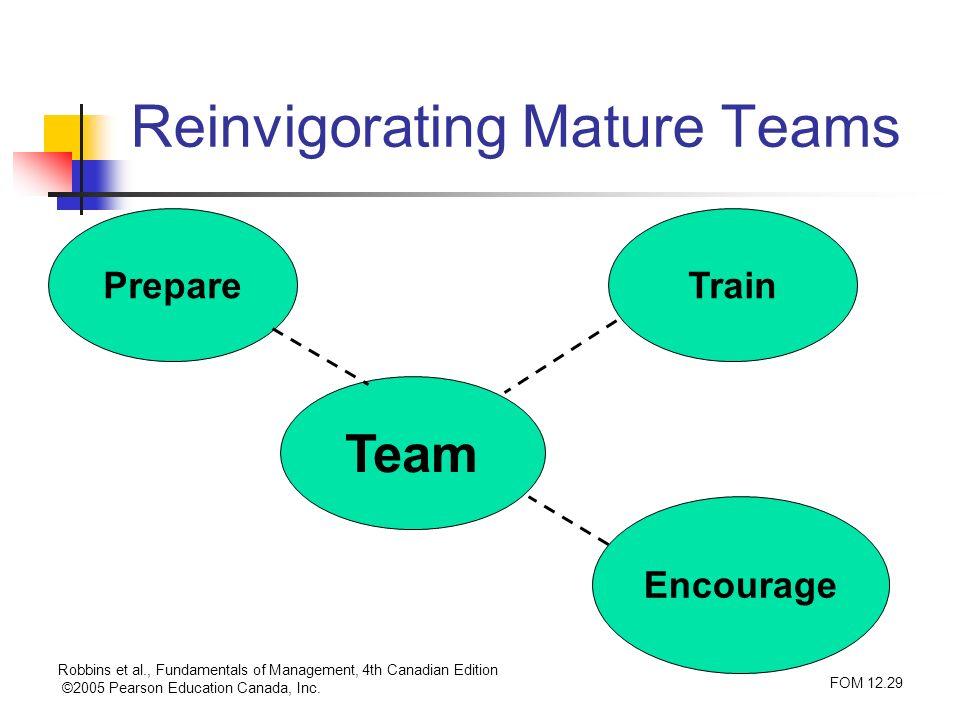 Reinvigorating Mature Teams