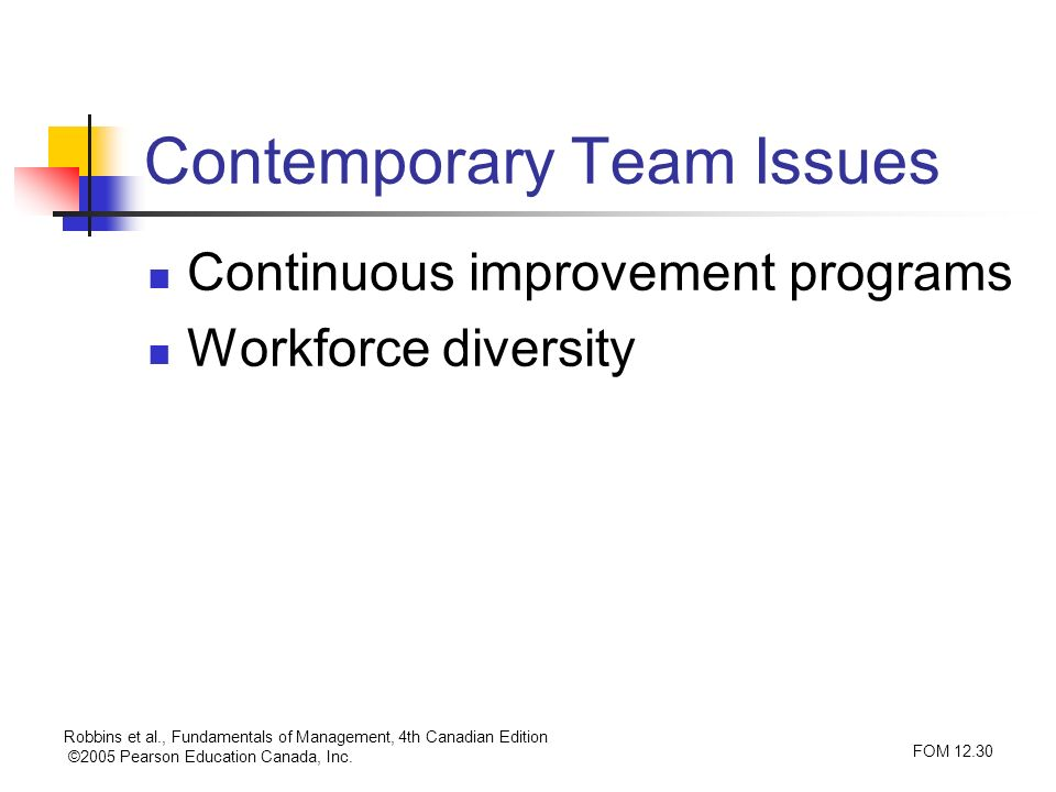 Contemporary Team Issues