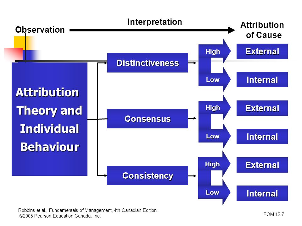 Attribution Theory and Individual Behaviour
