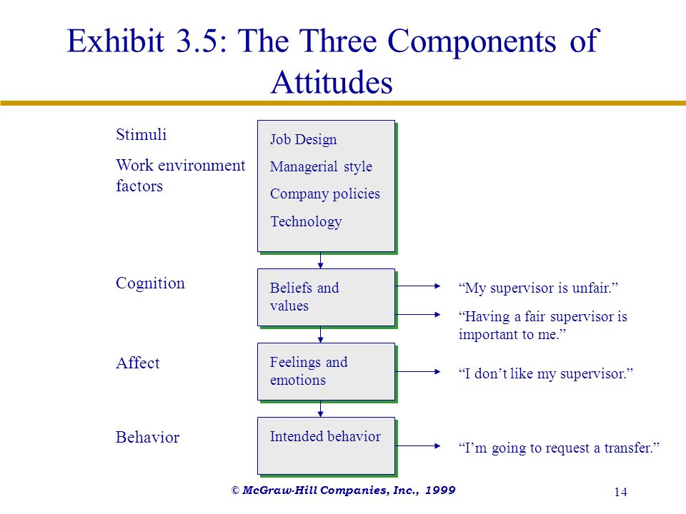 Exhibit 3.5: The Three Components of Attitudes