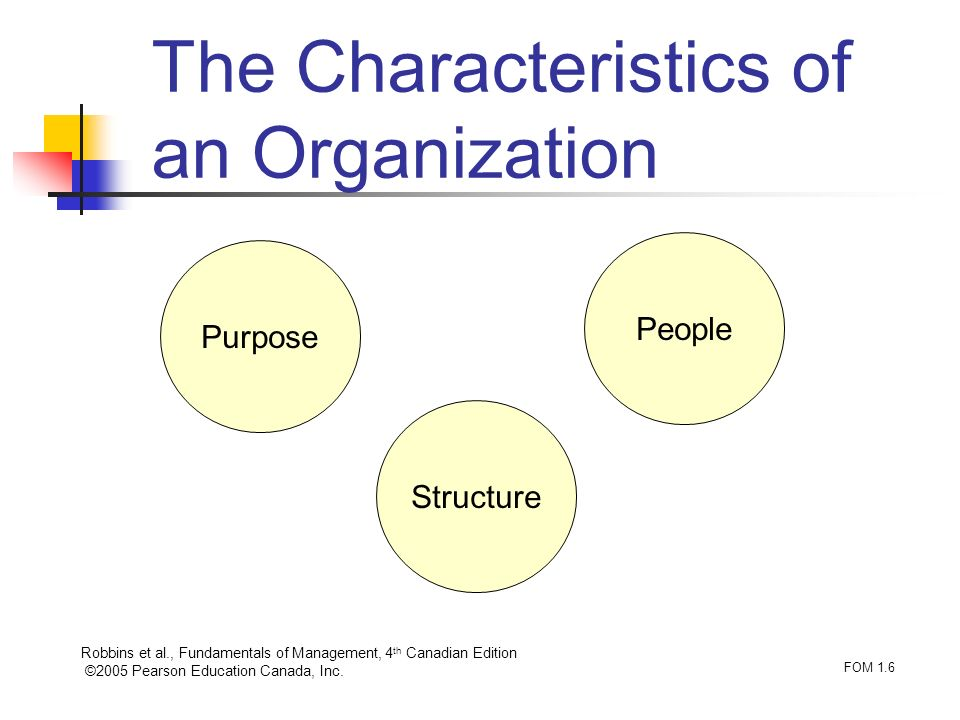 The Characteristics of an Organization