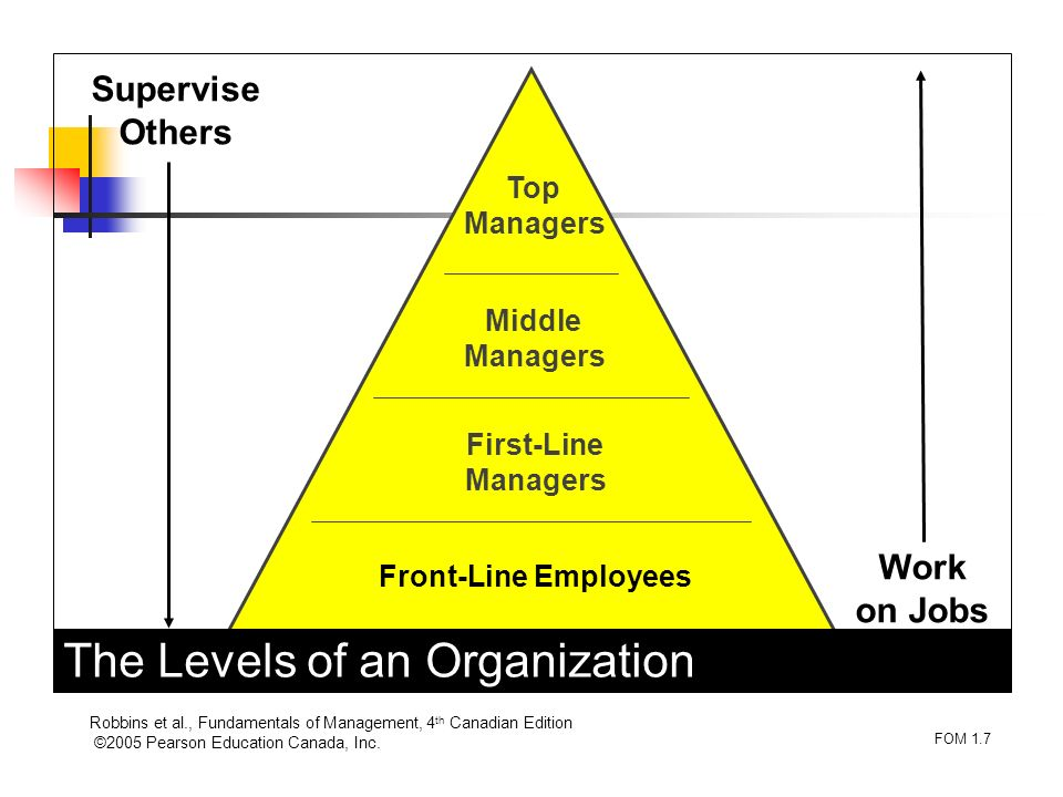 The Levels of an Organization