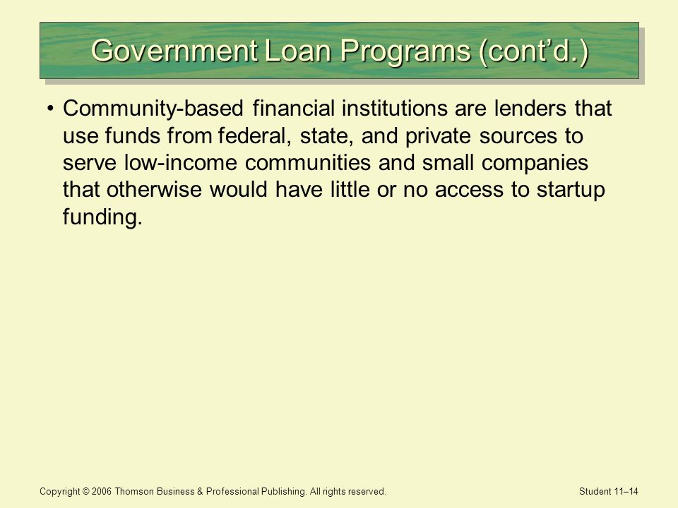 Government Loan Programs (cont'd.)