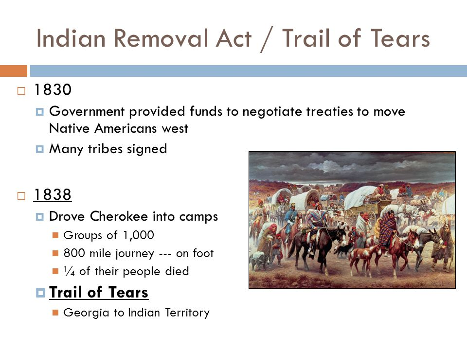 thesis statement for the indian removal act of 1830 Essay 2 – a scar on the face of america: indian removal act of 1830 renee roberts professor stacy taylor eng 1402 55z1 – essay 2 19 march 2012.