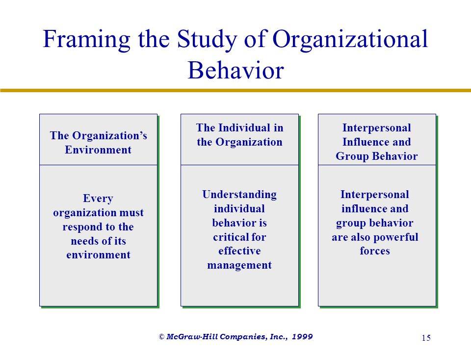Framing the Study of Organizational Behavior